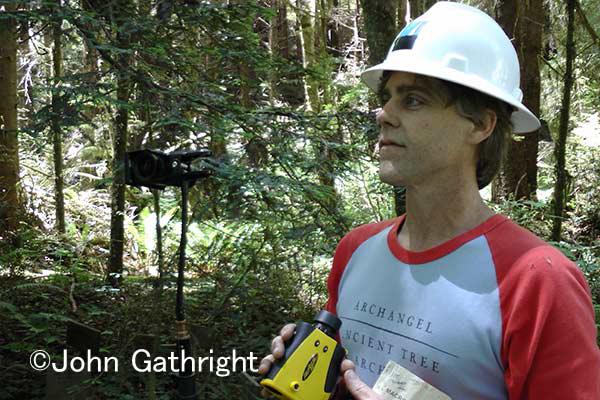 マイケルは世界一の樹高の木の研究をしている