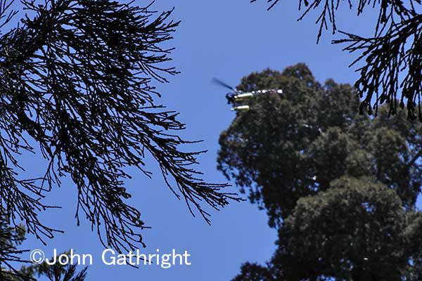 今回の空撮はこのヘリコプターで撮影。 隙間までどんどん入っていく優れものだ。うるさいカブトムシが飛んできた感じだ。